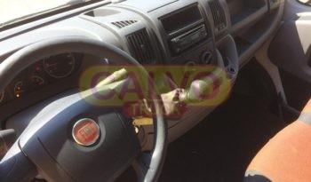 Fiat Ducato rivestimento isotermico abitacolo